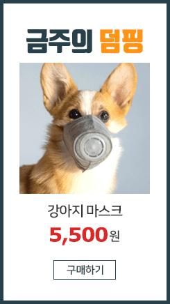 [당일발송] KN95 강아지 미세먼지 마스크 (3개입)