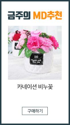 핸드메이드 카네이션 비누꽃/ 장미/선물/어버이날/스승의날