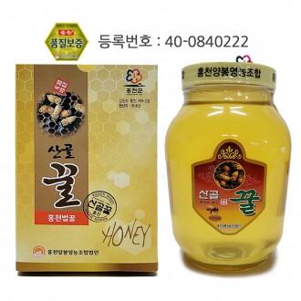 꿀2.4kg/벌꿀/ 설선물 명절선물
