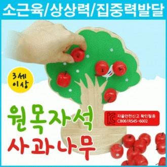 사과나무 완구 자석 어린이 kc인증 다원무역