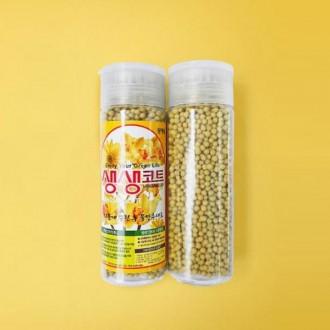 KT 생생코트 에스코트 (대) S코트 식물 화초영양제