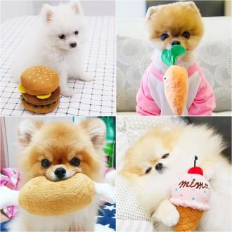 2021년 S/S 애견신상 삑삑이 봉제인형 장난감 인기모음 / 강아지장난감/ 반려동물장난감