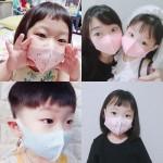 효성 정품 에어로실버 메쉬 마스크 빨아쓰는 특대형 아동용 성인용 캐릭터 유아 키즈 의무화 마스크